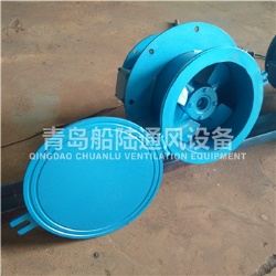 CWZ-200D Marine small sized axial fan